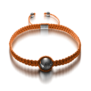 One Bracelet Orange layerslide